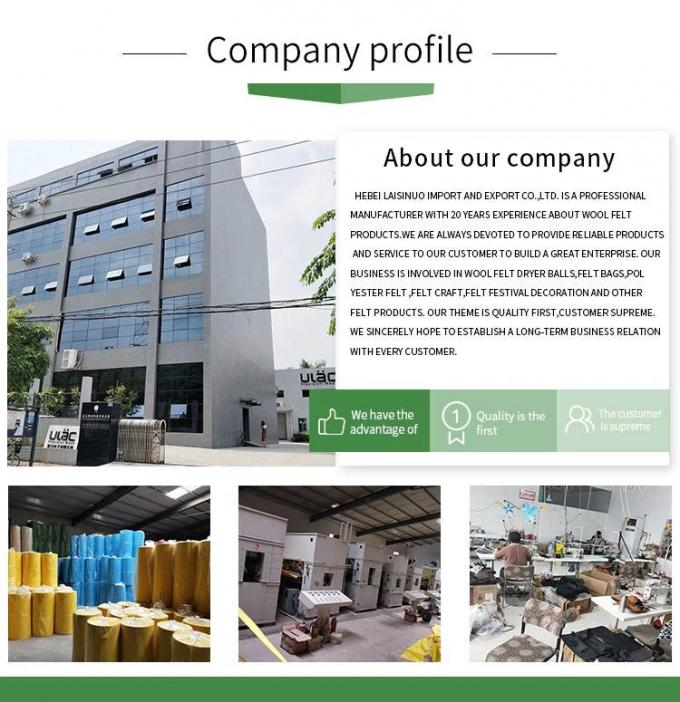 China Hebei Laisinuo Import And Export Co. Ltd company profile 1